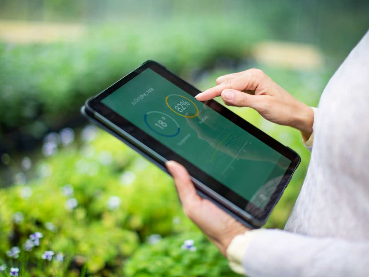 Gardener using digital tablet for information about new plants