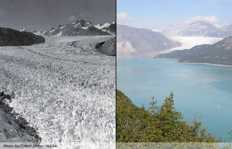 A photo of the Muir Glacier in 1941 and 2004 showing the change. NASA.