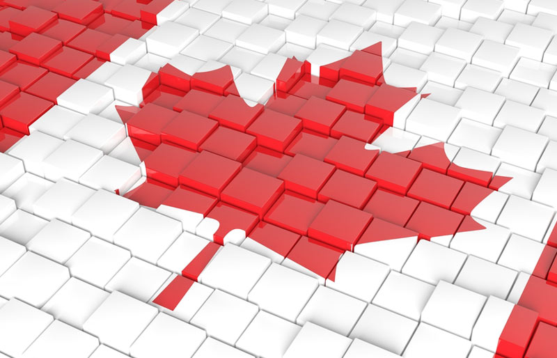 Close up of the maple leaf on a Canadian flag made of red and white blocks.