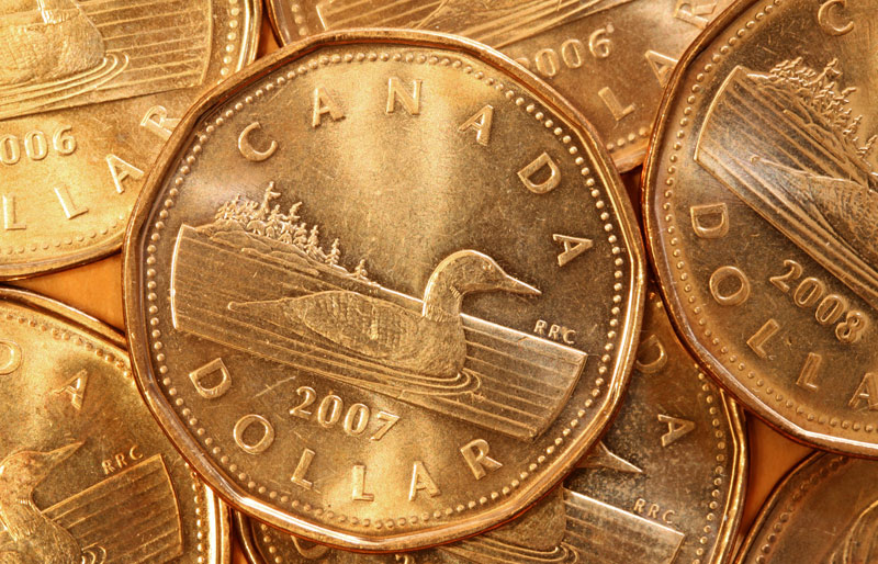 "Close up of Canadian dollar coins or ""loonies"""