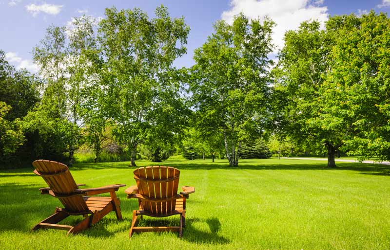 This is a photograph of two empty Adirondack chairs looking out over a forest.