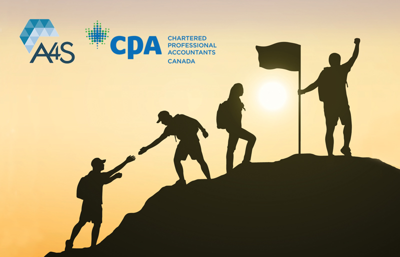 Silhouette of team of people helping each other to the top of hill with a flag planted