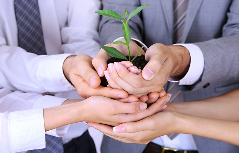 Group of business people assisting in holding a plant in dirt