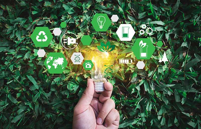 Hand holding a lit light bulb surrounded by green vegetation and eco icons for business