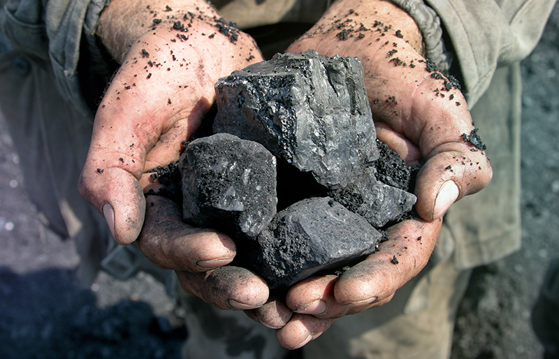 Coal miner holding raw coal in palm of hands