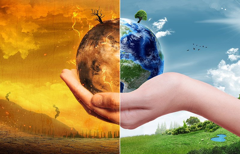 Climate change resources for accountants