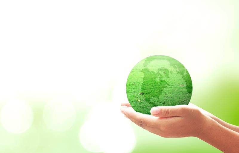 Hands holding a green earth globe on a blurred green bokeh background.