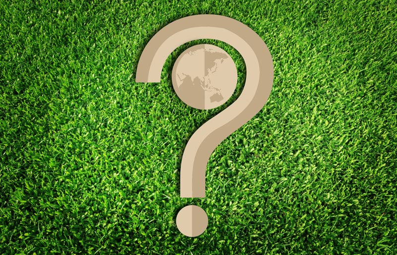 paper cut of question mark and globe on green grass