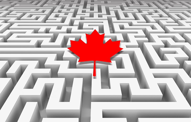 Canadian maple leaf lying over a confusing, never-ending maze