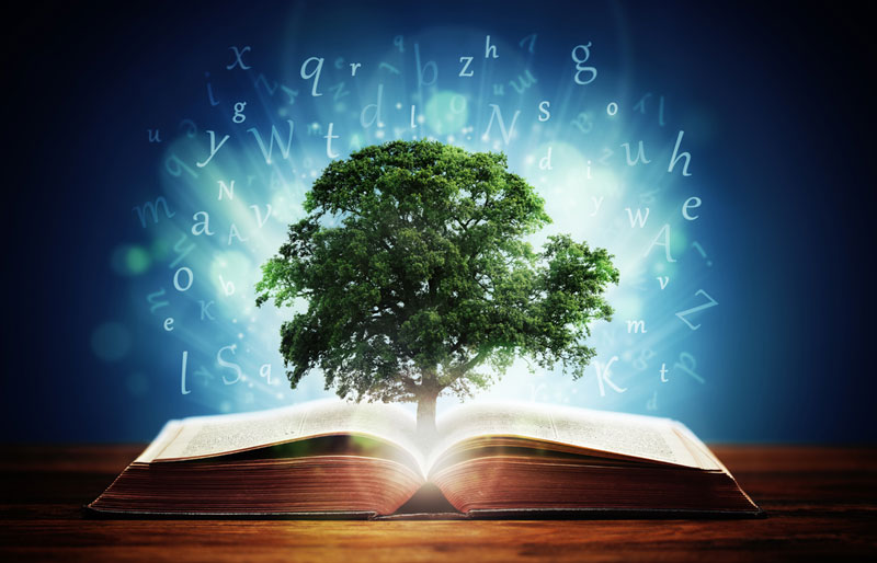 a tree coming out of a book with words glowing on the outside, concept art